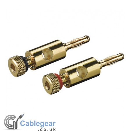 Gold Banana Plug Pair
